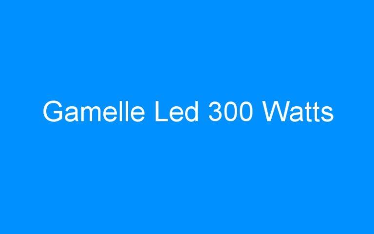 Gamelle Led 300 Watts