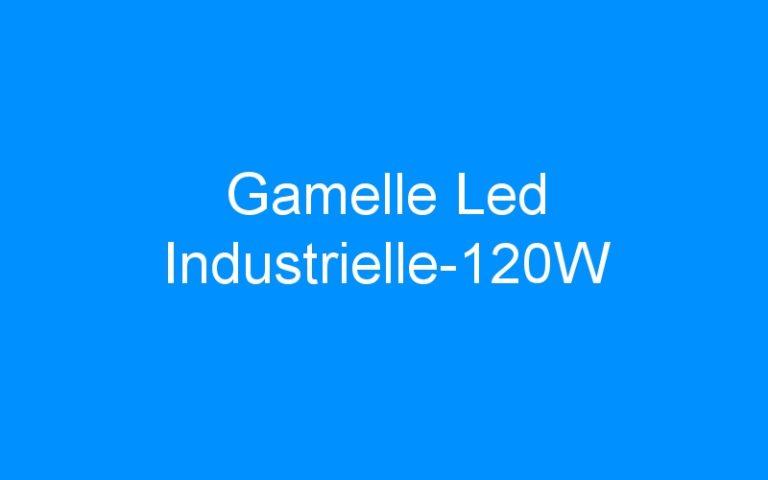 Gamelle Led Industrielle-120W