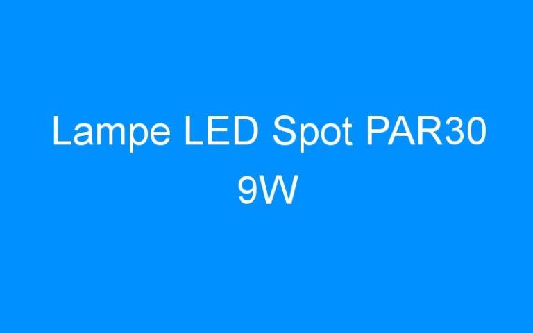 Lampe LED Spot PAR30 9W