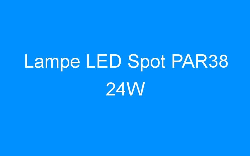Lampe LED Spot PAR38 24W