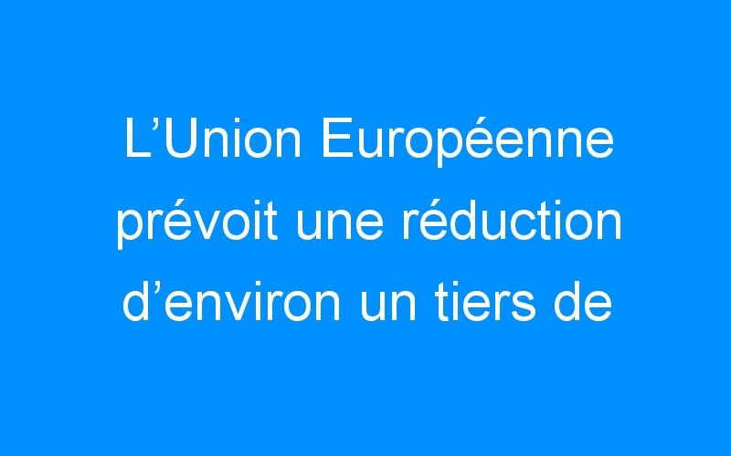 L'Union Européenne prévoit une réduction d'environ un tiers de sa consommation d'énergie d'ici 2030