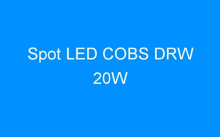 Spot LED COBS DRW 20W
